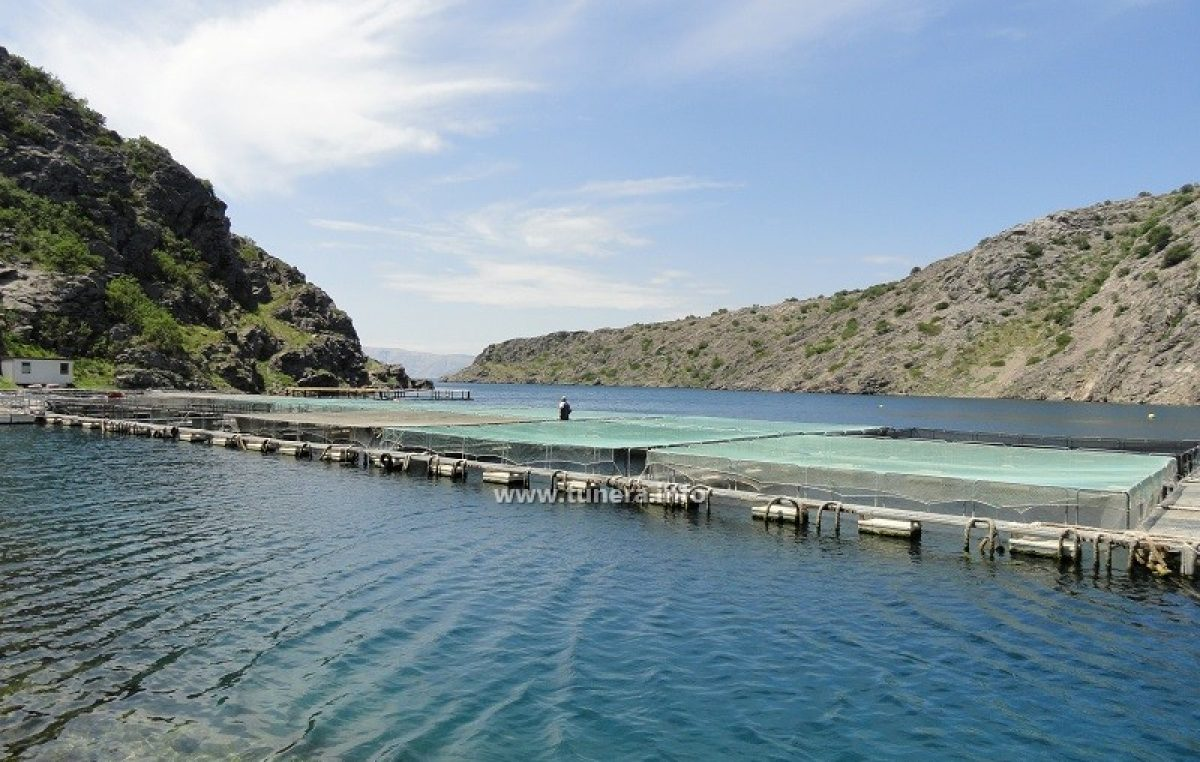 Ribogojilište u Žrnovnici i atraktivne plaže mogu u koncesiju