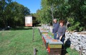 Devet OPG-ova dobilo milijun kuna za pčele, magarce, smokve, masline i grožđe