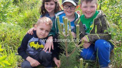 Vrtić Cvrčak i Mrav dobio zlatni status međunarodne eko škole